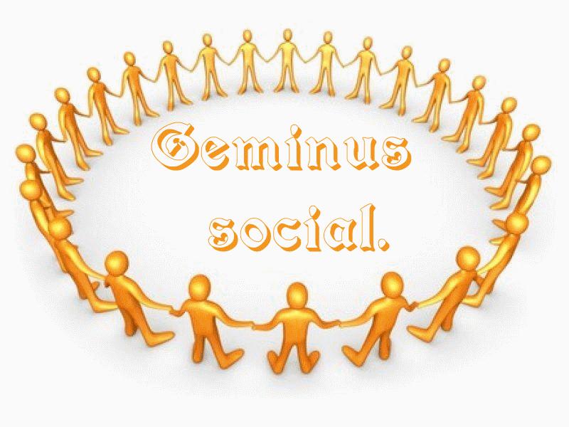 geminus social